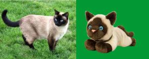 A számi cicus és mellette a valószerű játék macska változata.