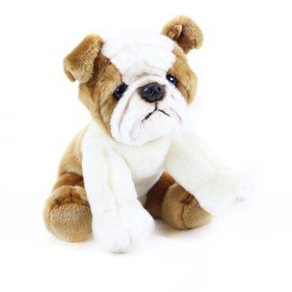 plüss angol bulldog