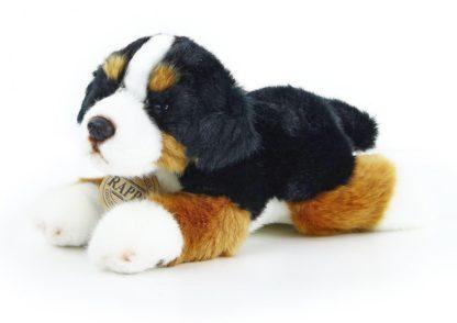 Berni pásztor plüss kutya