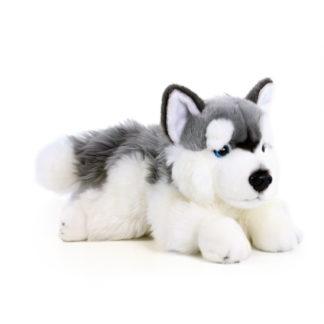 Cuki husky plüss kutya 30 cm